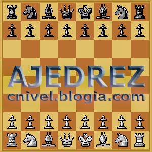 Clases de Ajedrez-Aperturas